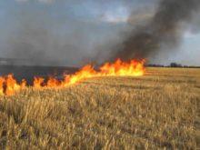 «Закарпатгаз» застерігає від спалювання сухостою поблизу газопроводів