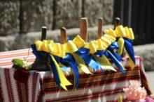 Останній дзвоник: графіки святкових лінійок в ужгородських школах