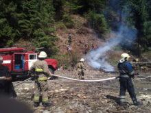 На Міжгірщині лісівники та рятувальники «гасили» пожежу