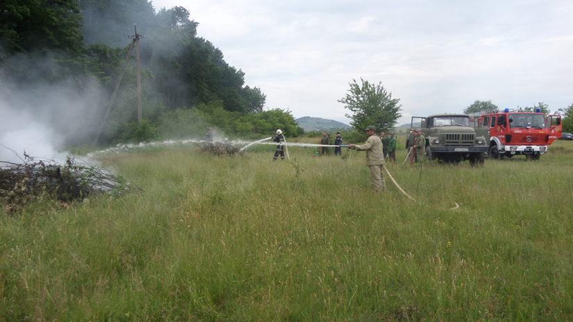 Лісівники та рятувальники Берегівщини провели спільні пожежні навчання
