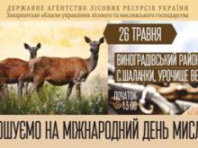 Закарпатців та гостей краю запрошують на Міжнародний день мисливця