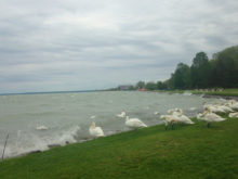 ЗАКАРПАТЦІ В УГОРЩИНІ: Озеро Балатон напередодні туристичного сезону