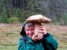 Конкурс грибників у «фейсбуці» дивує лісовими трофеями