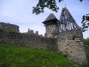 Рішення про передачу Невицького замку Кам'яницькій сільраді оскаржать у суді