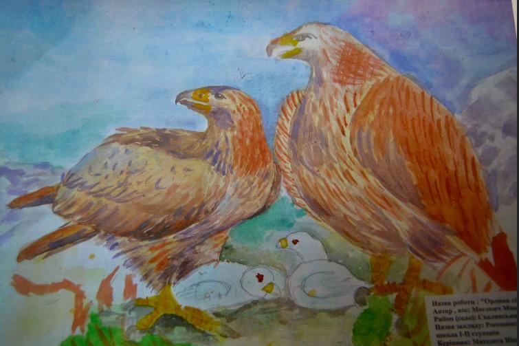На Закарпатті підбито підсумки конкурсу малюнків «Ліс – наше життя»
