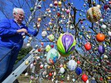 Дерево миру в Мукачеві прикрасили писанками