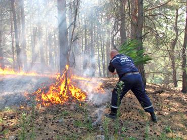 Щоб відпочинок у лісі не перетворився у вогняний кошмар