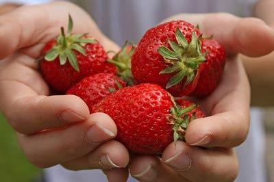 Червоні полуниці вже з'явилися на виноградівському базарі