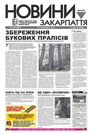 Номер газети Новини Закарпаття 11/06/2013 № 65 (4087)