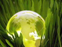 25 квітня на Закарпатті пройде  день довкілля