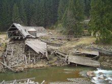 На Міжгірщині почалися роботи з відновлення Музею лісу і сплаву