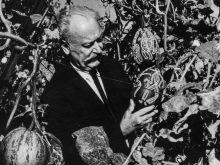 Чим любили займатися на дозвіллі відомі закарпатські художники?