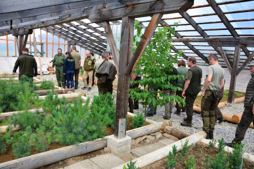 На Закарпаття з візитом навідалися словацькі лісівники