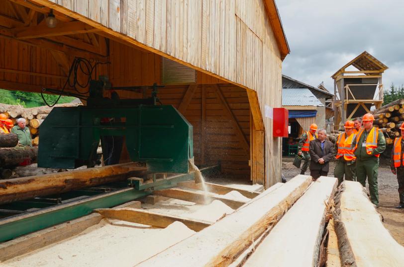 Ясінянський лісомисливгосп продовжує нарощувати обсяги глибокої переробки низькосортної деревини