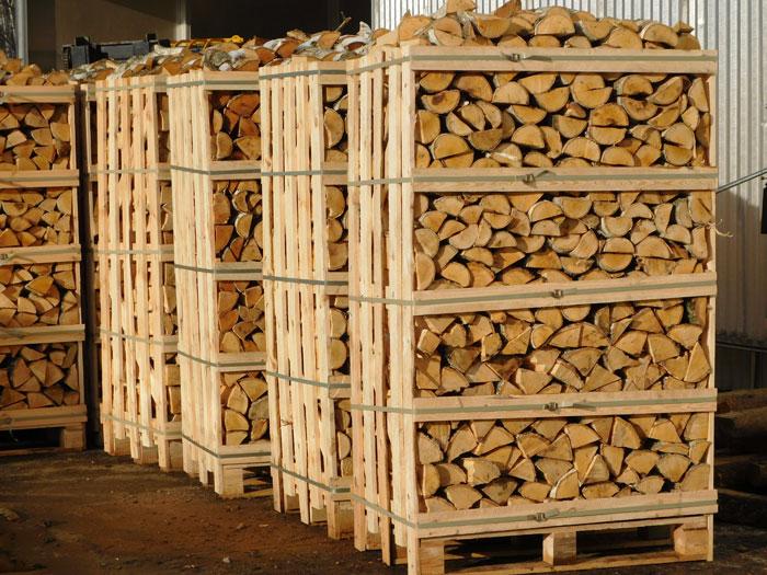 Лісівники Тячівського держлісгоспу заготовляють дрова на зиму