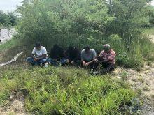 Поліція Ужгородщини затримала переправника нелегальних мігрантів з України до ЄС