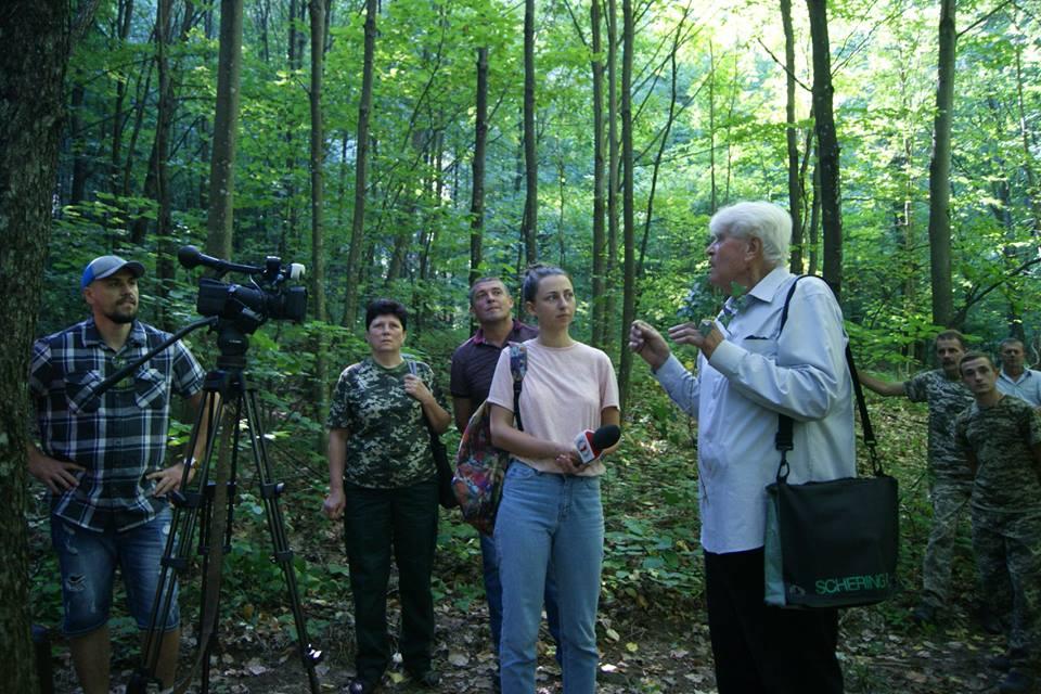 Природне поновлення дуба скельного, із досвіду Загатського лісництва