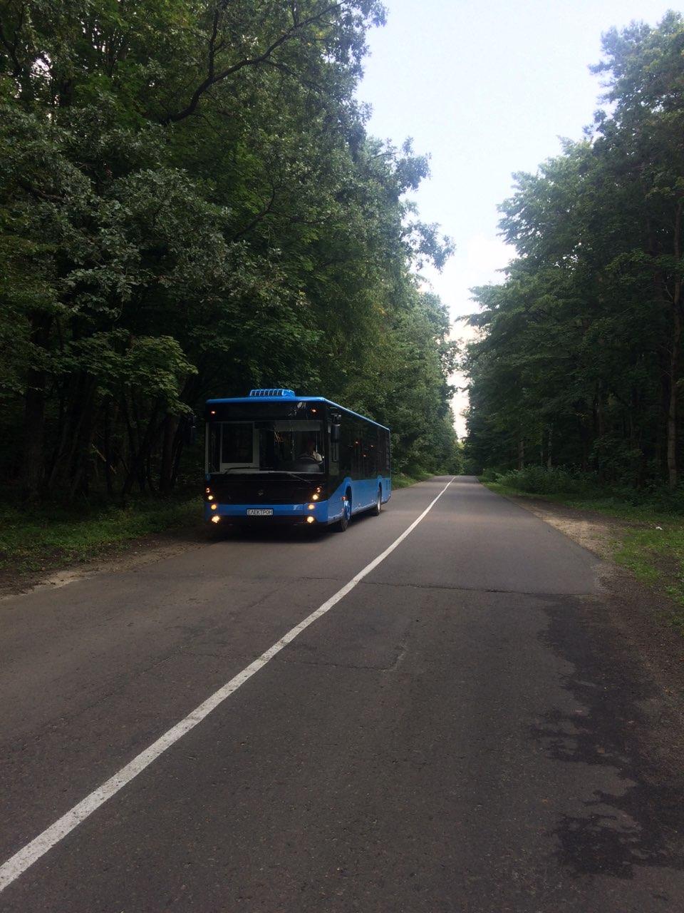Перші нові ужгородські автобуси проходять тестування