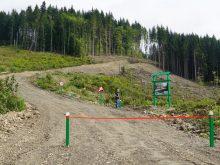 Перше в Україні автолісове кругове перехрестя облаштували закарпатські лісівники
