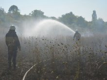 Минулої доби на Закарпатті сталося 14 пожеж, 13 з яких – в екосистемах