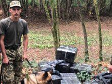 На Закарпатті прикордонники знову знайшли тютюнову контрабанду