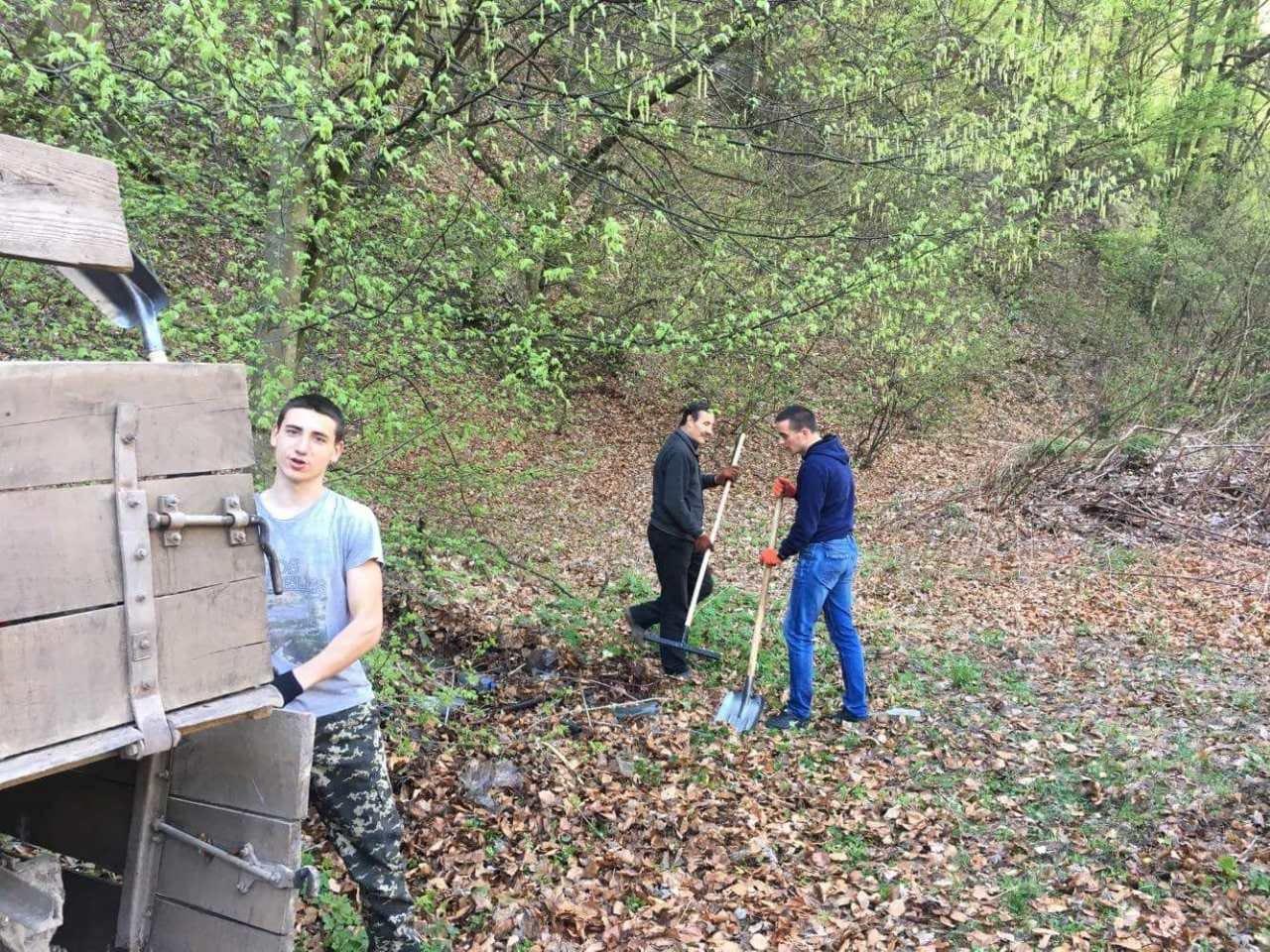 У лісі на Свалявщині провели суботник