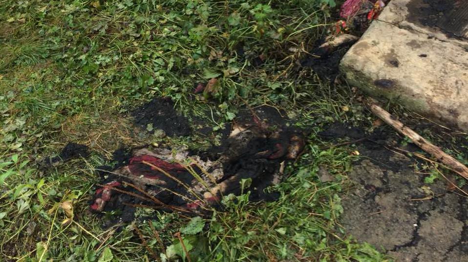 Закарпатські вогнеборці врятували літню жінку, яка спалювала сміття на території власного дворогосподарства