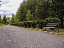 У Боздоському парку в Ужгороді привели до ладу одну з основних алей