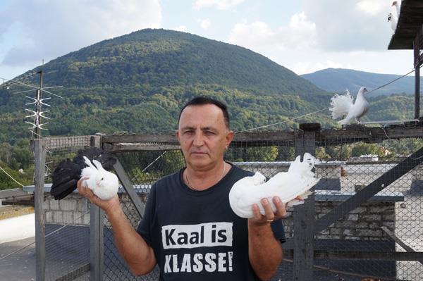 ПОШТОВІ, БУДАПЕШТСЬКІ ВИСОКОЛЬОТНІ ЛІНЕРИ, ІРАНЦІ… Тячівець розводить голубів на даху п'ятиповерхівки