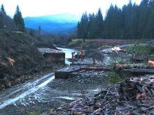 Триває реконструкція музею лісу і сплаву