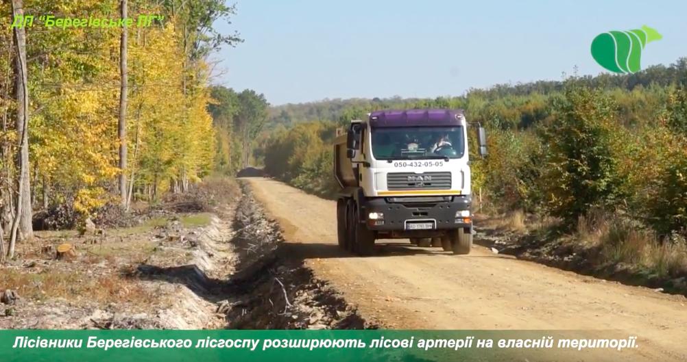 Лісівники Берегівського лісгоспу розширюють лісові артерії
