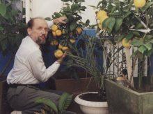 НАВІТЬ НАУКА – ЦЕ ЗАВЖДИ ІМПРОВІЗАЦІЯ. Доценту УжНУ Валерію Ходаку виповнилося 80