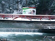 Води Щауля стримують 19 перепадів