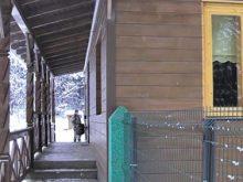 У Брустурянському ЛМГ активно реконструюють лісництва