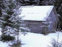 Будиночок лісівників врятував лижника, який тримав у напрузі всю країну