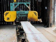 Переробляти деревину  будуть лісівники Міжгірщини