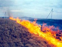 Попередження про недопущення спалювання сухотрав'я в охоронних зонах ліній електропередач, біля електростанцій та трансформаторних пунктів