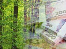 Майже 100 мільйонів гривень податків сплатили лісівники Закарпаття за перший квартал