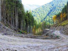 Вже понад 940 кілометрів лісових доріг є на Закарпатті