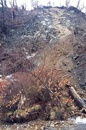 На Рахівщині зсув частково перекрив трасу державного значення Мукачево – Рогатин, але рух уже відновили